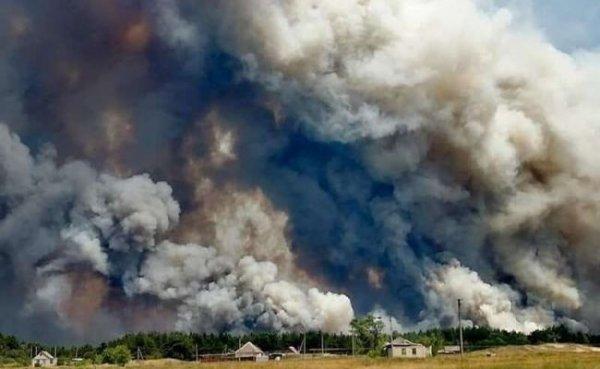 В Луганской области масштабные пожары, есть пострадавшие