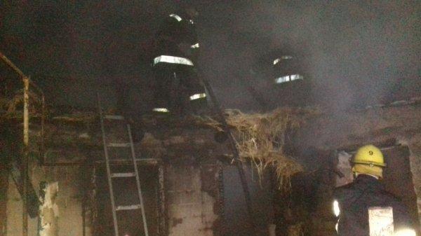 В Запорожской области во время пожара погибла девушка (ФОТО)