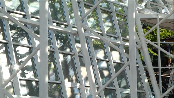 В Запорожском ботаническом саду откроется самая большая в стране оранжерея (ФОТО)
