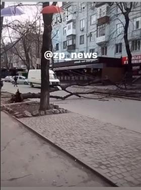 В Запорожье на машину упал электрический столб (ФОТО)